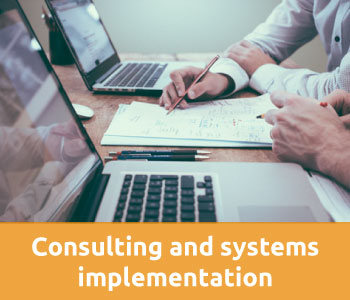 Consulting and systems implementation