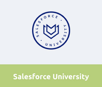 Salesforce University